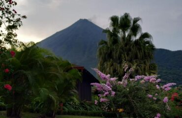 Costa Rica-Volcán Arenal con flor