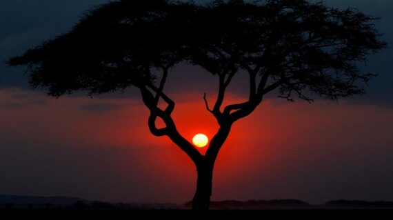 Kenya Puesta del Sol