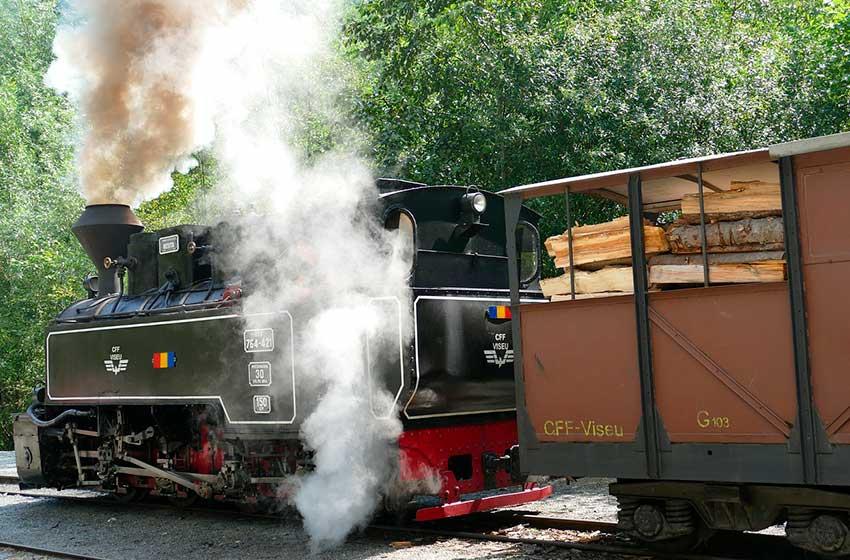 Tren de Vapor en Rumania