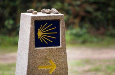 camino de santiago-concha