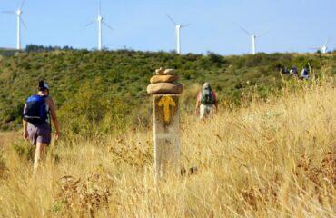 camino de santiago-peregrinos-campo