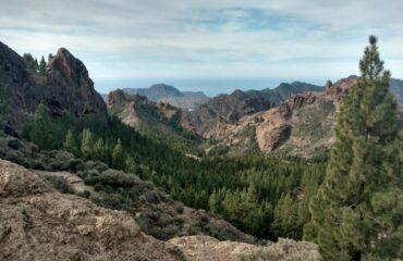 Gran Canaria Verde