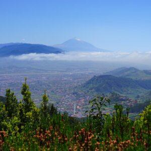 Tenerife Norte -Oferta